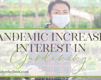 pandemic interest in gardening
