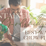 Why Container Gardening Is The Best Way To Grow Plants