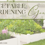 How You Can Grow More by Setting Vegetable Gardening Goals Now